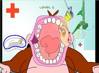 Maymun Diş Hekiminde